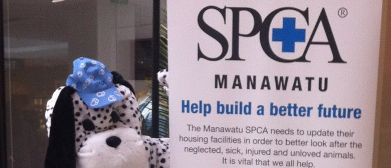 SPCA National Appeal Day