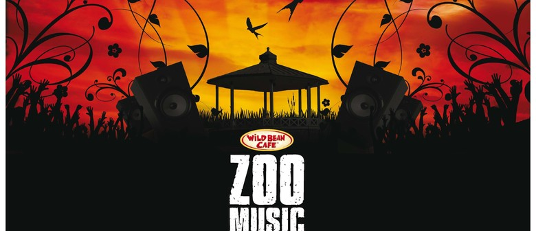 Wild Bean Cafe ZooMusic - Midnight Youth (unplugged)