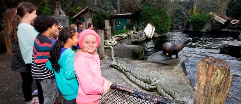 Kids Only Safari Nights