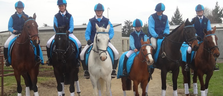 Springston Trophy 3-Day Horse Event