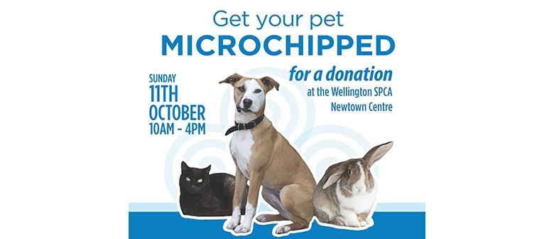 How Do I Change The Information On My Dog S Microchip