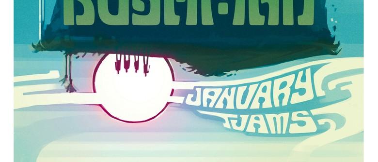 Little Bushman January Jams! - Support From Tama Waipara