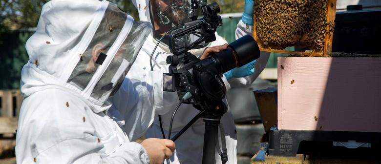 Enviro Talk: Successful No-budget Filmmaking