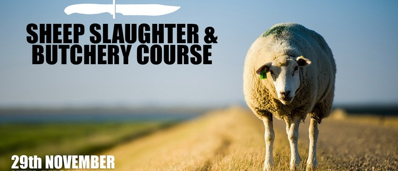 Sheep Slaughter Course