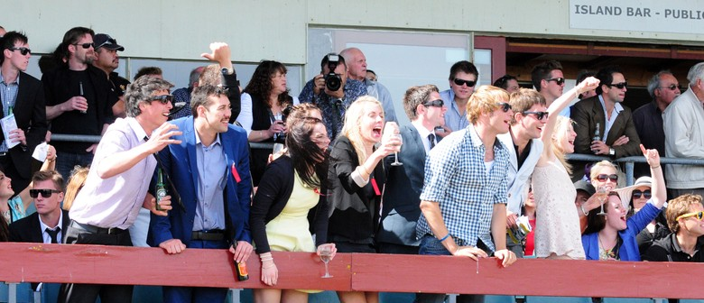 Christmas At the Races featuring the Wanganui Cup
