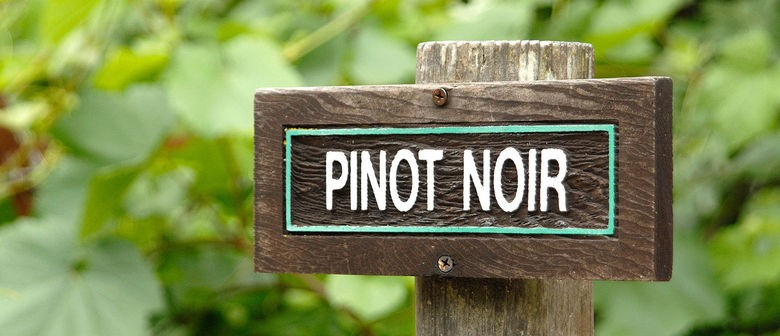 Pinot Noir Club: Greatest Hits of the Year