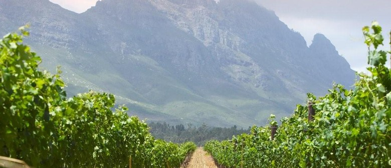 Free Wine Tasting - South Africa