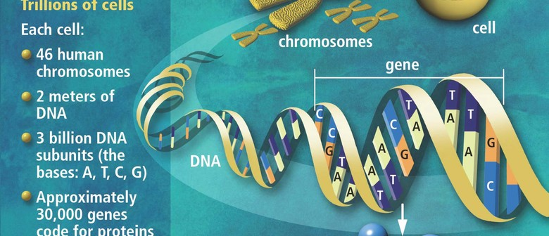 Family Tree DNA Y & Autosomal DNA with Gail Riddell