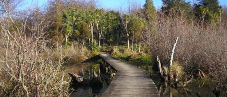 ECHO Walking Festival - Howarth Memorial Wetland Walk