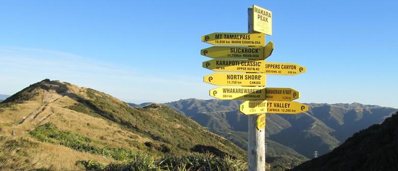 Off the Beaten Track- Explore Makara Peak & Long Gully Bush