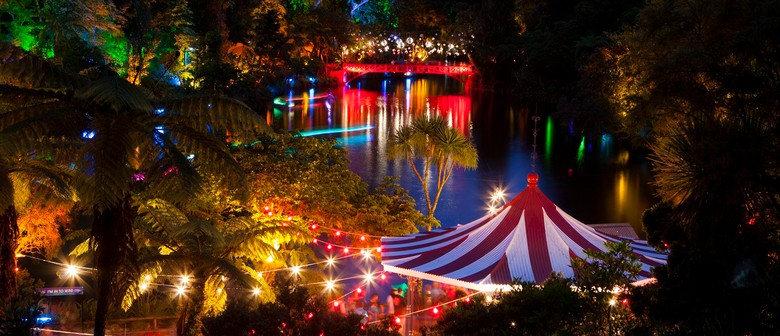 TSB Bank Festival of Lights - TSB Bank Festival Of Lights - New Plymouth - Eventfinda