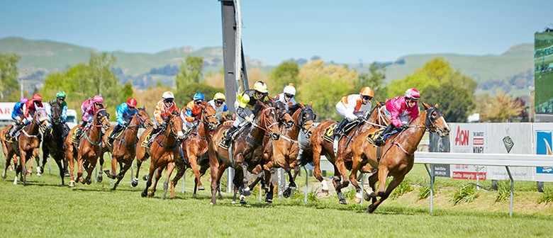 Little Avondale Lowland Stakes Twilight Raceday ft HOY