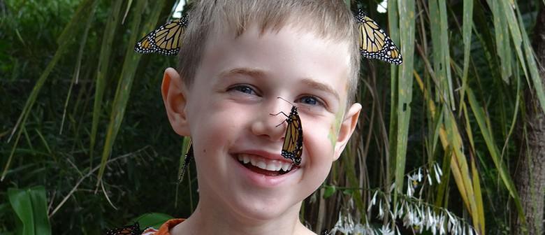 Butterflies, Bugs and Bush Workshop