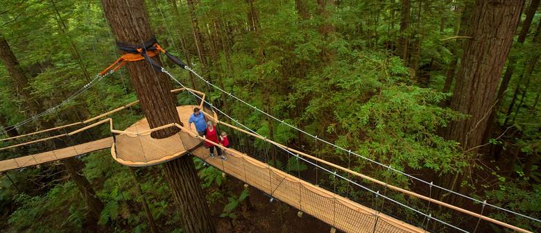 Redwoods Treewalk Easter Sunday Activities