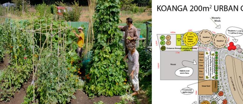 Regenerative Urban Farming Workshop