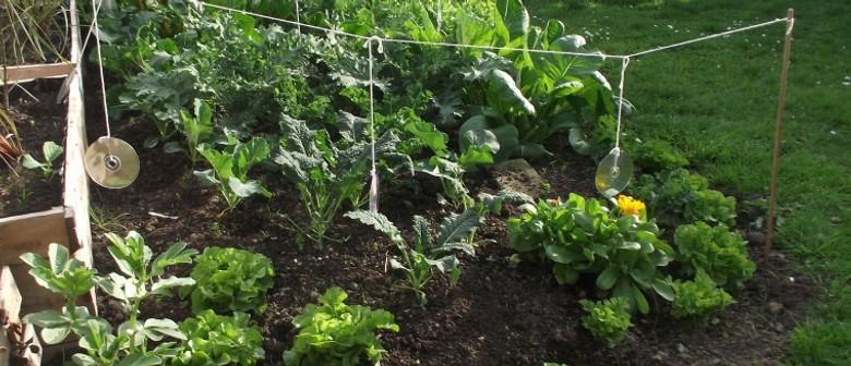Home Food Production Workshop - Part 2
