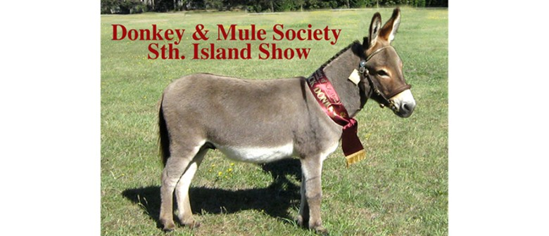 Donkey & Mule Society of NZ (Inc.) All South Island Show