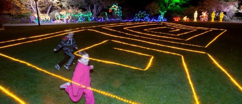 Unison Light Trail - Taupo Winter Festival 2016