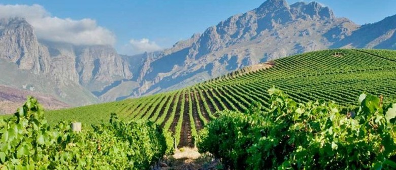 Wine Exploration Series - South Africa