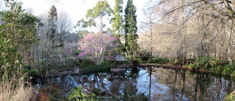 Guided Tour: Ayrlies Garden
