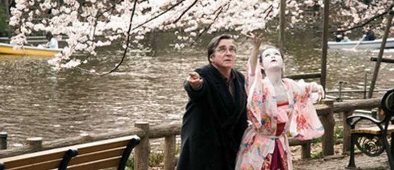 Cherry Blossoms - Hanami