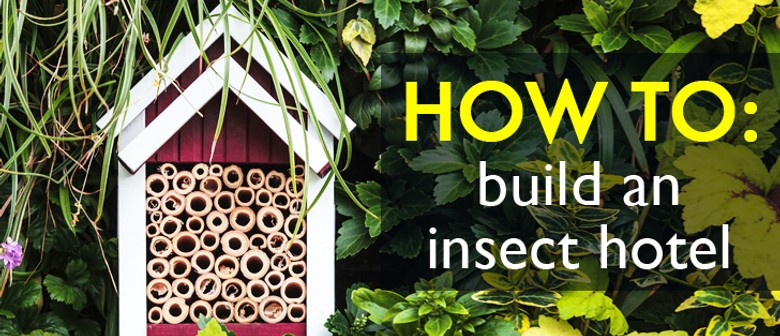 Bee Boutiques & Bug Hotels School Holiday Programme