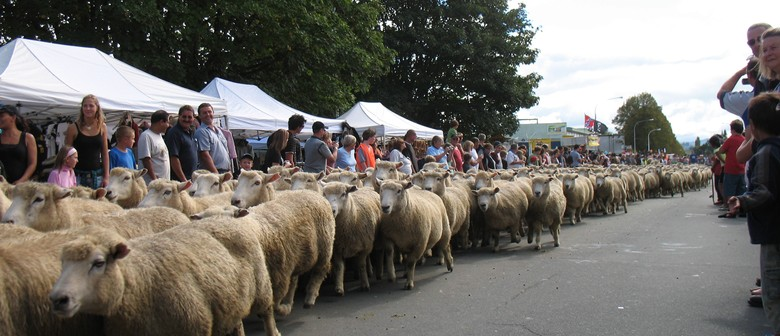 The Great NZ Muster
