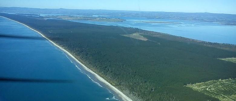 Matakana Island Sponsored Walk-a-thon