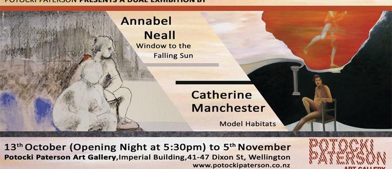 Window to The Falling Sun & Model Habitats