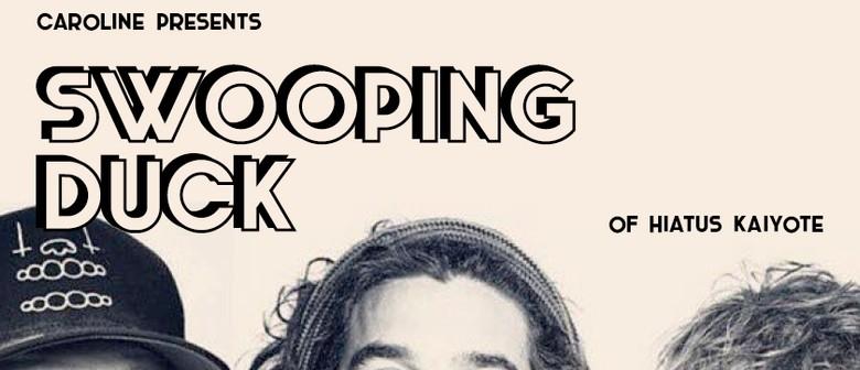 Swooping Duck