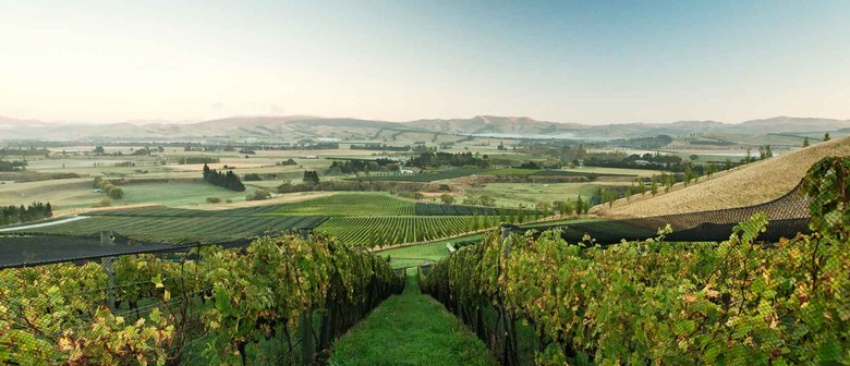 Focus On Waipara