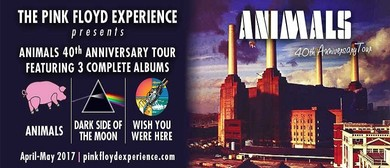 The Pink Floyd Experience