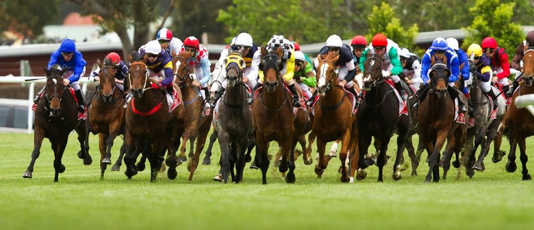 Under Starters Orders Melbourne Cup