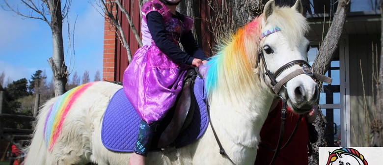 Ponies2go At Ferrymead Labour Weekend Extravanganza