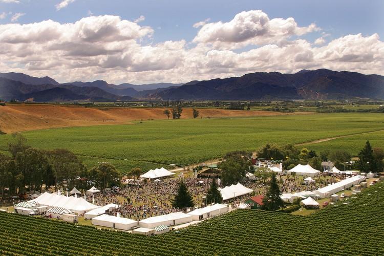 Blenheim Wine And Food Festival