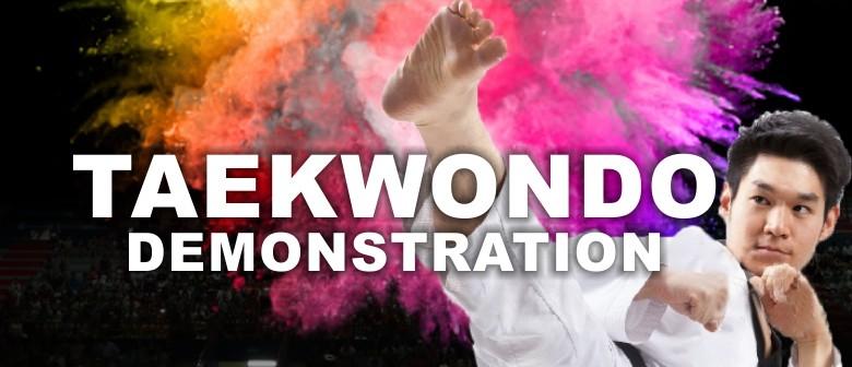Taekwondo Demonstration - First Official Korean Team Visit