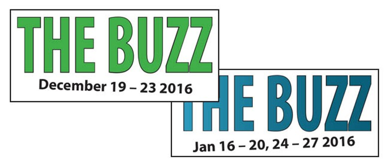 The Buzz Children's Holiday Programme for Year 1-9