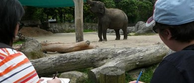 Sketching Animals At the Zoo