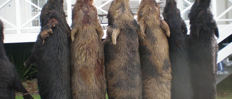 Opononi Hotel 2010 Wild Boar Hunt