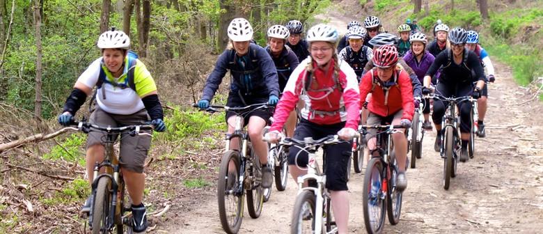 Beginner Mountain Biking