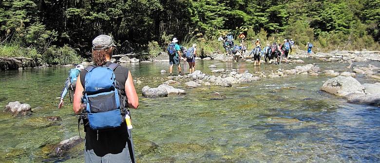 Waipakihi Heli-hike: CANCELLED