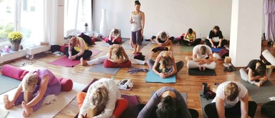 Yin Yoga & Anatomy Teacher Training - Level 2