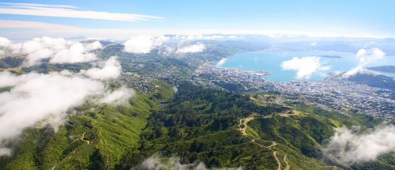 The Changing Biodiversity of Wellington