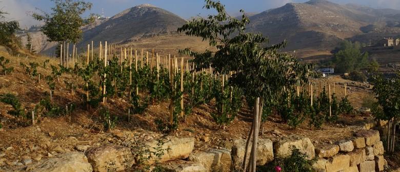 Wine Exploration Series: Middle East