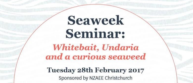Seaweek Seminar: Whitebait, Undaria and A Curious Seaweed