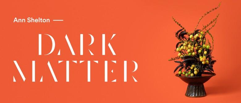 Ann Shelton: Dark Matter