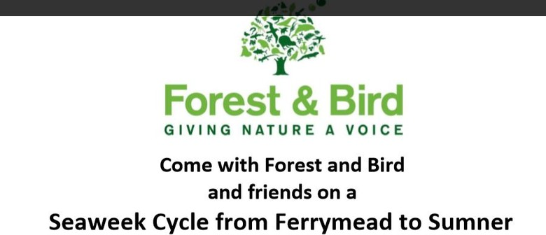 Cruise the Coastal Pathways With Forest and Bird