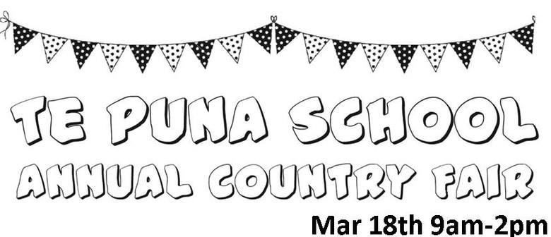 Te Puna School Country Fair 2017
