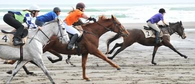Karekare Beach Races