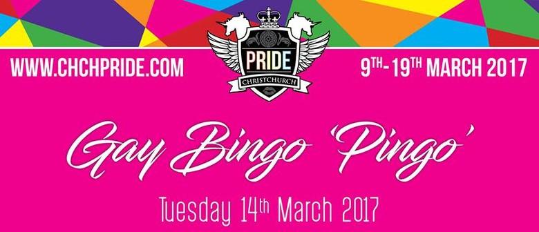 Gay Bingo Pink Health Fundraiser - Pingo